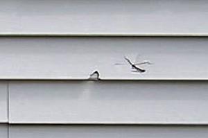 homeowner repair 3